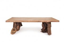 Tisch Balina